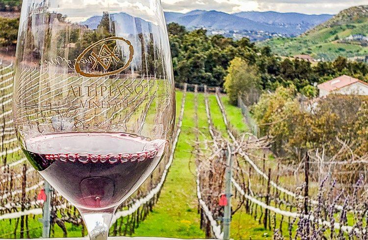 Altipiano Vineyard