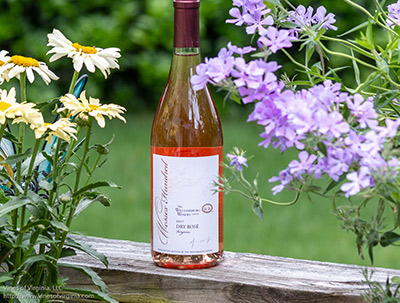 Williamsburg Winery Rose