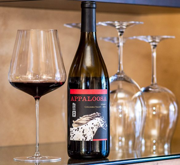 APPALOOSA SYRAH COLUMBIA VALLEY 2016